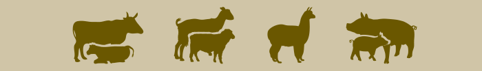 Tiere Pictogramme_9